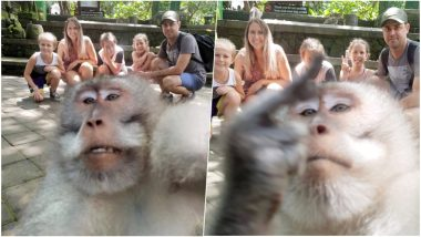 Monkey Photobombs Family's Vacation Picture in Bali And Gives Them a Middle Finger (Watch Hilarious Video)