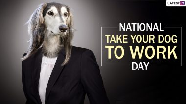 National Take Your Dog to Work Day 2019: Know The Date, History and Significance of The Day