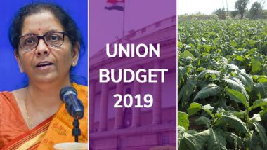 Union Budget 2019 Expectations: What Tobacco Farmers Seek From Nirmala Sitharaman!