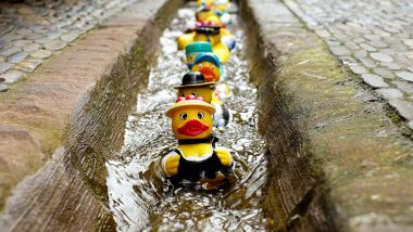 Curious Case of Rubber Ducks! 29,000 Bath Toys Lost at Sea Are Helping Scientists Understand Ocean Current!