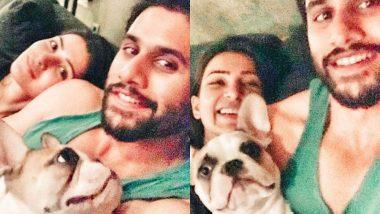 Samantha Akkineni And Naga Chaitanya's Sunday Involved Their Cute Doggo, Hash, Making Amusing Expressions - View Post