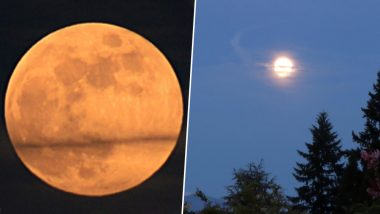 Strawberry Moon 2019 Graces Skies; Know Date and Time of June's Full Moon in Different Parts of World, View Pics!