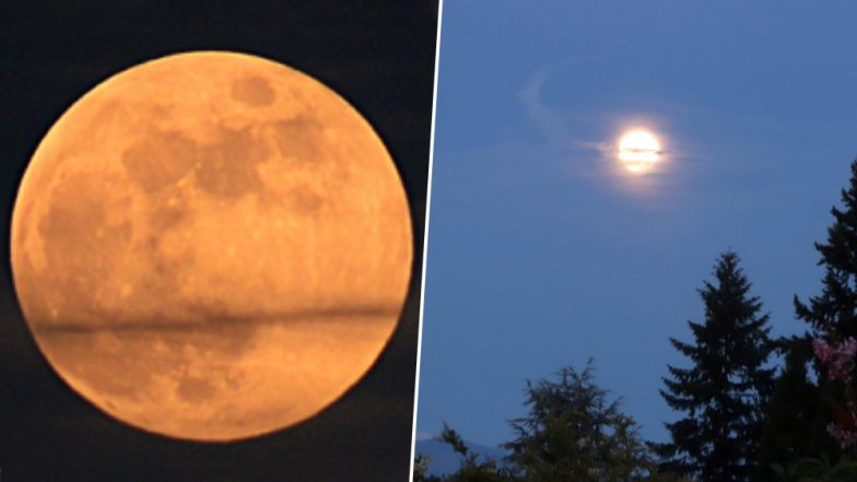 Strawberry Moon 2019 Graces Skies; Know Date and Time of June's Full Moon in Different Parts of ...