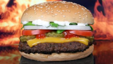 Insect Found in McDonald's Burger! Delhi Man to Get Rs 70,000 Compensation 5 Years Later