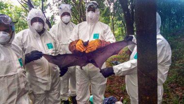 Nipah Virus: Alert in 8 Karnataka Districts