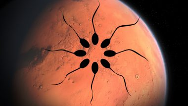 Can Humans Reproduce on Mars? Study Finds Frozen Sperm Survives Exposure to Microgravity in Space