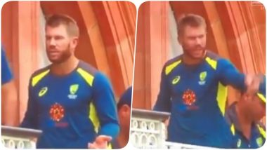 Did David Warner Get into a Verbal Spat With Ricky Ponting During England vs Australia, CWC 2019? (Watch Video)