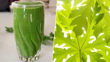 Papaya Leaves for Dengue Fever: How to Make This Platelet-Boosting Juice at Home (Watch Video)