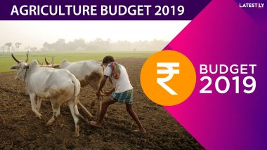 Agriculture Budget 2019: Nirmala Sitharaman Announces Zero Budget Farming, Jal Jivan Mission for Agrarian Sector Revival And Doubling Farmers' Income