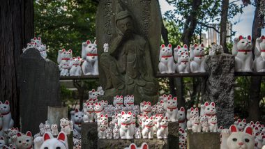 Tokyo Has a Cat Temple! Check Out Pictures of 10,000 'Lucky Cats' Beckoning Visitors at Japan's Gotokuji Temple