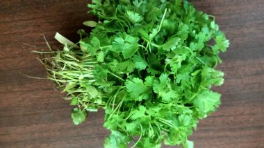 How to Use Coriander (Dhania) to Lose Weight (Watch Video)