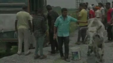 Madhya Pradesh: Man Thrashed by Locals for Smuggling Cattle in Jabalpur, Truck Carrying 30 Cattle Seized