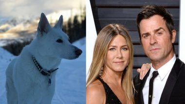 Jennifer Aniston And Ex-Husband Justin Theroux Reunite To Throw A Beautiful Ceremony For Their Late Dog, Dolly - View Pics