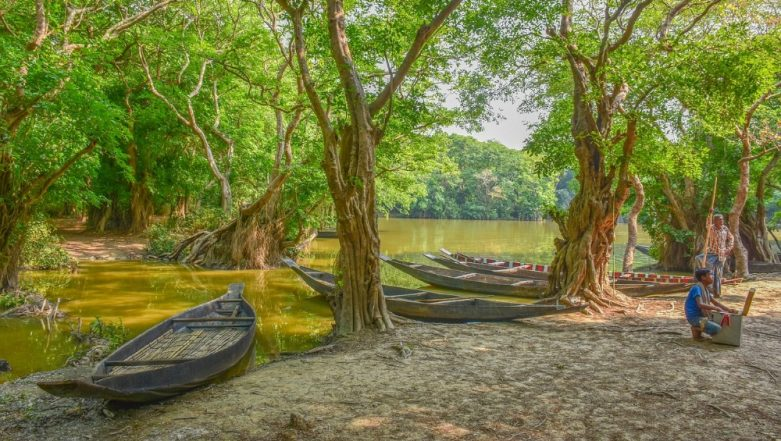International Day for the Conservation of the Mangrove Ecosystem 2019: Why Protecting Mangroves Is Important for our Environment
