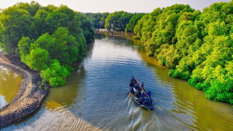 International Day for the Conservation of the Mangrove Ecosystem 2019: Theme and Significance of the Day