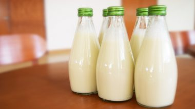 National Milk Day 2020: Which Type Of Milk Is The Healthiest? The Health Benefits and The Calorie Counts Explained!