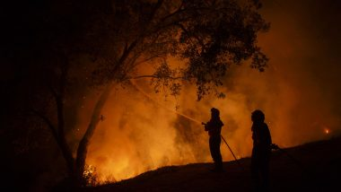 Portugal Wildfires: More Than 1,000 Firefighters, 20 Helicopters Battle to Control Raging Blaze