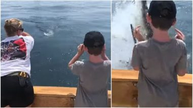 Narrow Escape For Boy After Great White Shark Leaps Out of Water at Cape Cod Bay, Almost Bites Him (Watch Video)