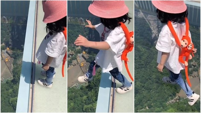 Brave 3-Year-Old Girl Walks on 300-Meter-High Glass Bridge in China, Netizens Impressed! (Watch Video)