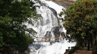 Monsoon 2019 Special: 5 Waterfalls Near Mumbai That You Should Visit to Make Most of this Rainy Season!