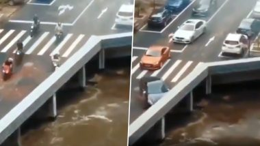 Entry to Hogwarts or Optical Illusion? Cars and Bikes Disappearing On Bridge Confuses People on Twitter