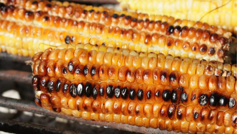 Corn Benefits and Nutrition: Is it Healthy to Eat Bhutta? 5 Myths Busted