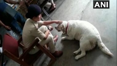 Pet Dog Adopted by Police Station in MP After its Owners Get Arrested in Murder Case