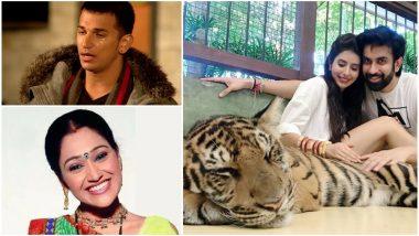 Prince Narula, Disha Vakani, Charu Asopa – Take a Look at the TV Newsmakers of the Week