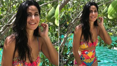 Katrina Kaif Looks Gorgeous in a Colorful Monokini Flashing Her Million Dollar Smile in This New Picture from Her Beach Vacay