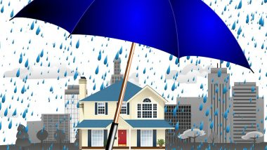 Healthy Homes During Monsoon: Ways to Keep Your House Free From Dampness, Fungus, Mould and Musty Smell (Watch Video)