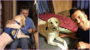 Man's Best Friend Indeed! Zeego the Golden Retriever Lab Helps Wheelchair-Bound Owner Cope with Everyday Challenges (Watch Heart-Warming Video)