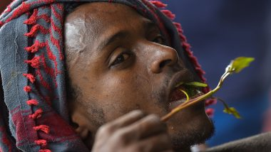 Khat Addiction in Ethiopia Prompts Rehab to Focus on the Gateway Drug That Leads Addicts to Harder Substances