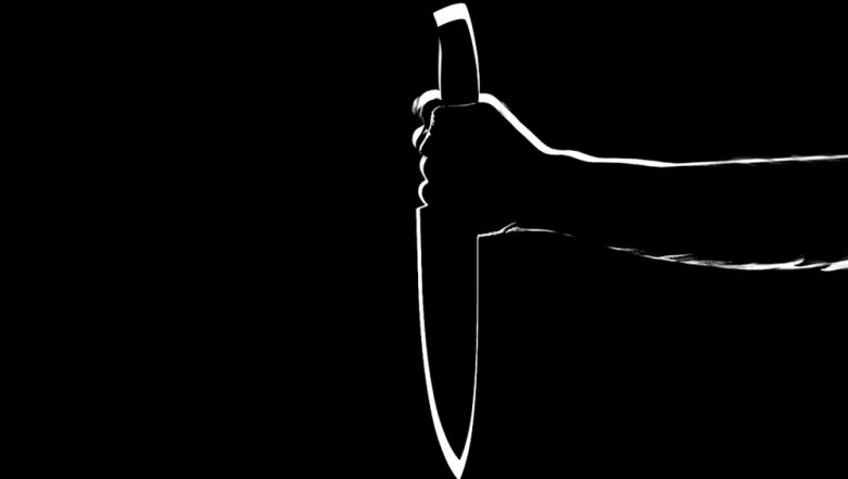 Pune: Ahead of US Visa Interview, Woman Stabs Her Child to Death After Having an Argument With Husband