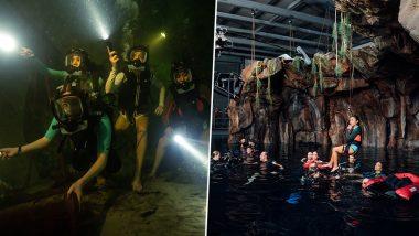 47 Meters Down Uncaged: Johannes Roberts Reveals How His Film Explores the Unique Dimension of Cave Diving!