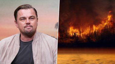 Leonardo DiCaprio's Initiative 'Earth Alliance' Pledges $5 Million Donation for Amazon Rainforest Fires