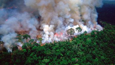 Amazon Fire: Seven Nations Sign Forest Protection Pact