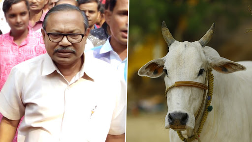 Assam BJP Lawmaker Dilip Kumar Paul Sparks Controversy, Claims Cow Gives More Milk When a Flute is Played in 'Lord Krishna Style'
