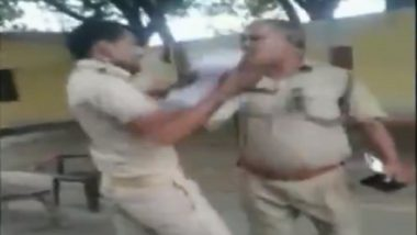 Uttar Pradesh: Fight Erupts Between PRD Jawan, Home Guard in Baghpat; Watch Video