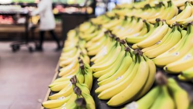 Lucknow Institute Develops 'Medicine' to Save Banana Crops From Fungal Infection