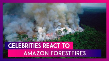 Arjun Kapoor, Alia Bhatt, Akshay Kumar, Demi Lovato, Madonna & Others React To Amazon Forest Fires