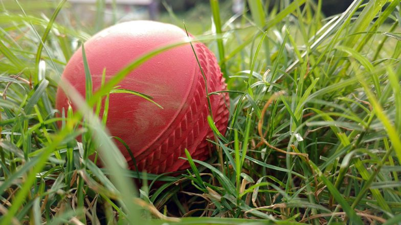 South Asian Games 2019, Bhutan vs Maldives Cricket Live Streaming Online & Time in IST: Check Live Score Online, Get Free Telecast Details of BHU vs MLD T20 Match on TV