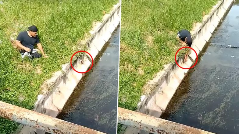 Disabled Man Risks His Own Life to Rescue Kitten Fallen in Drain, Internet Hails Him as Video Goes Viral