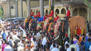 Mysuru Palace Dasara 2019: Ahead of the 10-Day Festival, First Team of Elephants Recieve Grand Welcome at the Royal Residence (See Viral Pics & Video)
