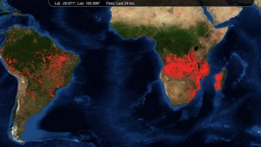 Africa's Angola and Congo Regions Are Burning More Than Amazon Rainforest Fires Shows NASA's Map of Fires