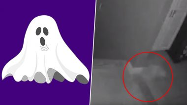 Ghost Caught on Camera With Its Pet! NY Couple See Spooky Shadows in Their Home (Watch Viral Video)