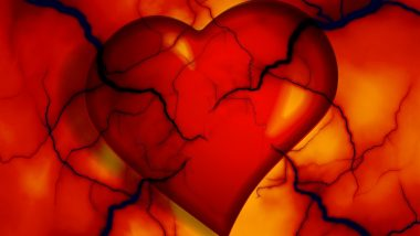 What Causes Heart Diseases? 8 Factors from Loneliness to Child Abuse that Impair Your Cardiac Health