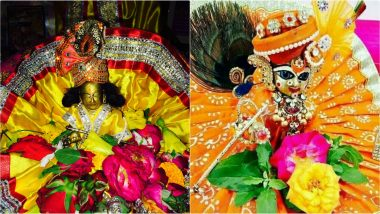 Laddu Gopal Ki Poshak Images: How to Dress Up Bal Gopal for Janmashtami 2019? Morpankh Mukut to Favourite Flower, Here's List of Items