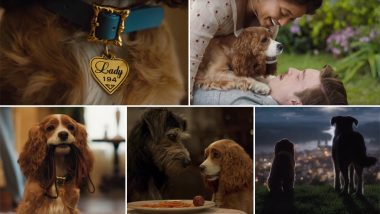 Lady and The Tramp Trailer Video: Justin Theroux and Tessa Thompson's Disney Movie Promises to Be a Treat for All, Dog Lovers or Not!