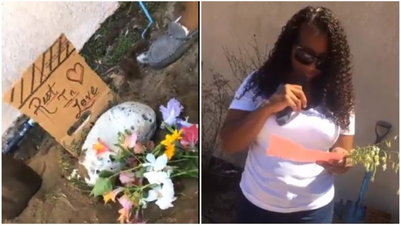 Girl Arranges a Funeral for Her Lizard! Funny Videos Leave Internet in Splits