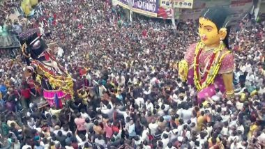 Kali Pili Marbat 2019 Celebration Pics: Know Date and Significance of This Procession in Nagpur